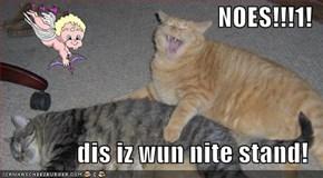 NOES!!!1!  dis iz wun nite stand!