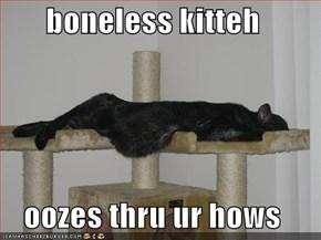 boneless kitteh