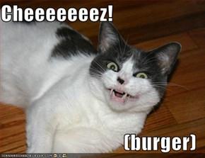 Cheeeeeeez!  (burger)