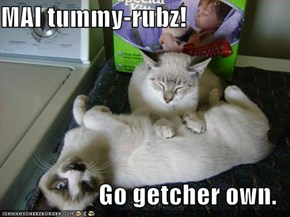 MAI tummy-rubz!  Go getcher own.