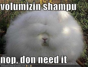 volumizin shampu  nop, don need it