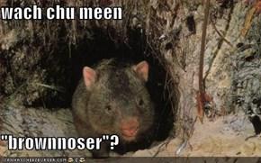 """wach chu meen  """"brownnoser""""?"""