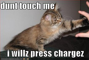 dunt touch me  i willz press chargez
