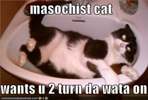 masochist cat  wants u 2 turn da wata on
