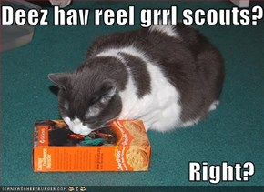 Deez hav reel grrl scouts?  Right?
