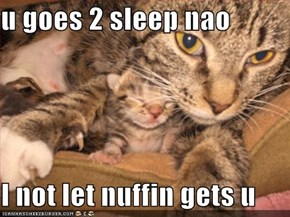 u goes 2 sleep nao  I not let nuffin gets u