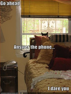 Go ahead Answer the phone... I dare you