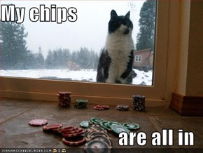 My chips  are all in