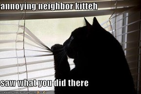 annoying neighbor kitteh  saw what you did there