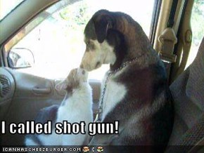 I called shot gun!