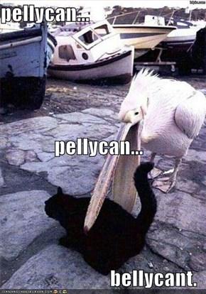 pellycan... pellycan... bellycant.