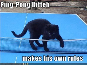 Ping-Pong Kitteh  makes his own rules