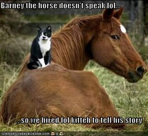 Barney the horse doesn't speak lol...  ...so we hired lol kitteh to tell his story