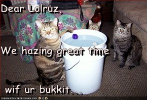 Dear Lolruz, We hazing great time  wif ur bukkit...