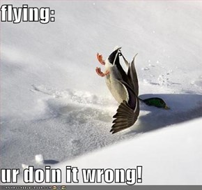 flying:  ur doin it wrong!