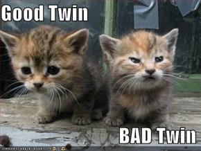 Good Twin                                BAD Twin