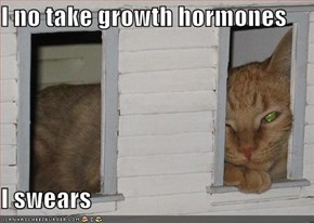 I no take growth hormones  I swears
