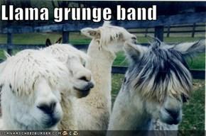 Llama grunge band