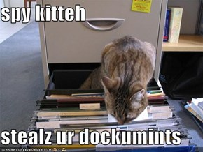spy kitteh  stealz ur dockumints
