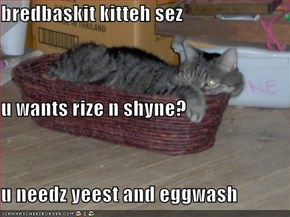 bredbaskit kitteh sez u wants rize n shyne? u needz yeest and eggwash