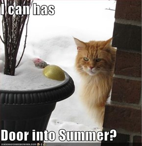 I can has   Door into Summer?