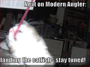 Next on Modern Angler:  landing the catfish - stay tuned!