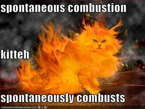 spontaneous combustion  kitteh spontaneously combusts