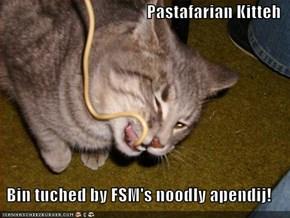 Pastafarian Kitteh  Bin tuched by FSM's noodly apendij!