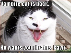 Vampire cat is back.  He wants your brains. Rawr.