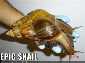 EPIC SNAIL