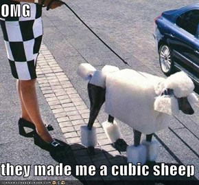 OMG  they made me a cubic sheep