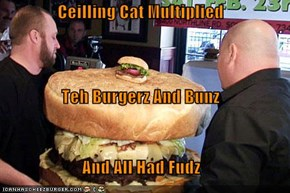 Ceilling Cat Multiplied Teh Burgerz And Bunz And All Had Fudz
