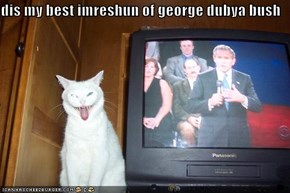 dis my best imreshun of george dubya bush