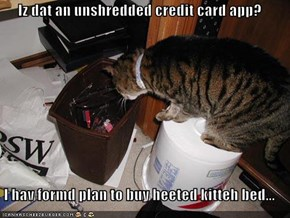 Iz dat an unshredded credit card app?  I hav formd plan to buy heeted kitteh bed...