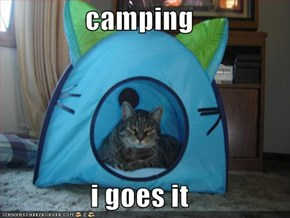 camping  i goes it