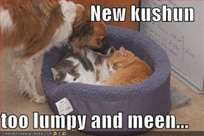 New kushun  too lumpy and meen...