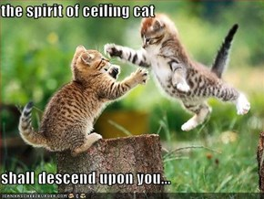 the spirit of ceiling cat  shall descend upon you...