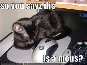 so you sayz dis  is a mous?