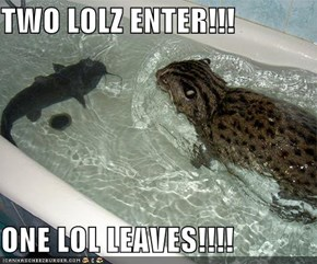 TWO LOLZ ENTER!!!  ONE LOL LEAVES!!!!