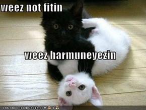 weez not fitin weez harmuneyezin