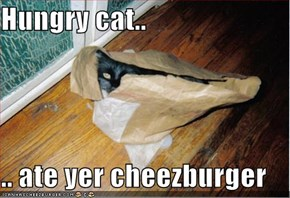 Hungry cat..  .. ate yer cheezburger