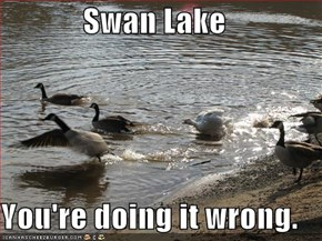 Swan Lake  You're doing it wrong.