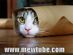 www.mewtube.com