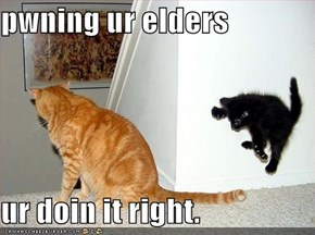 pwning ur elders  ur doin it right.