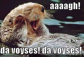 aaaagh!  da voyses! da voyses!