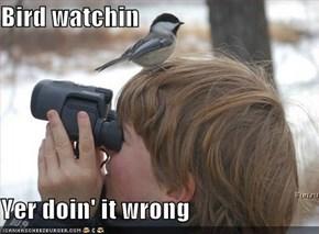 Bird watchin  Yer doin' it wrong