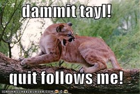 dammit tayl!  quit follows me!