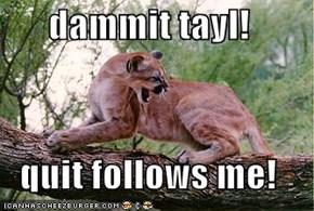 dammit tayl!  quit follows me!
