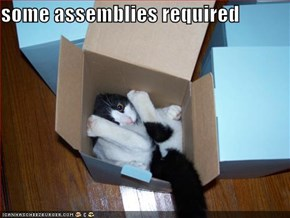 some assemblies required