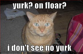 yurk? on floar?  i don't see no yurk